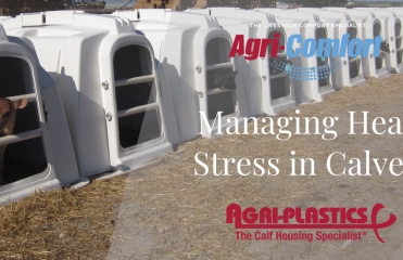Agri-Comfort Agri-Plastics Heat Stress Heat Abatement in Calves