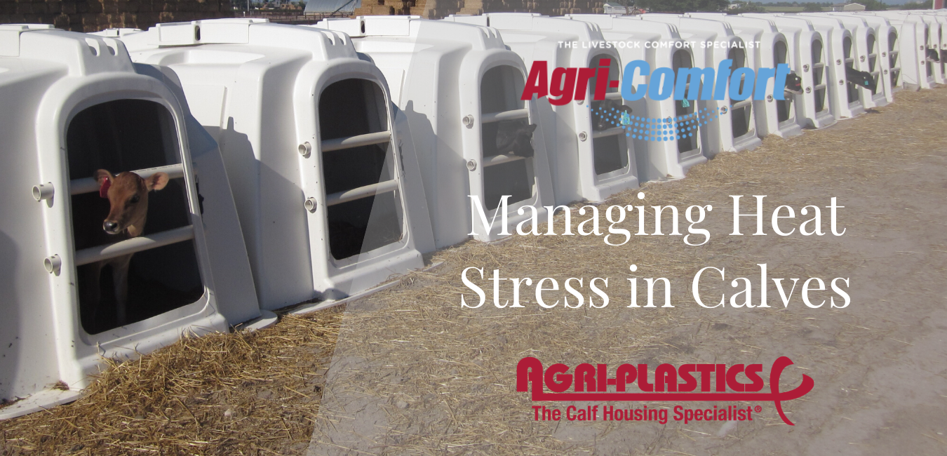 Agri-Comfort Agri-Plastics Heat Stress Heat Abatement in Calves