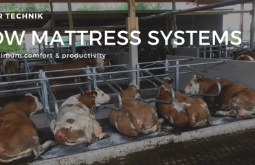 Cow Mattress Cow Mat Systems for maximum productivity and comfort Huber Technik